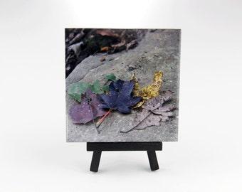 Ceramic Coaster Tile - Happy Leaf