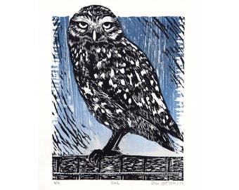 Owl - ORIGINAL - 2 colors Woodcut of a Brazilian Owl