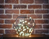 Small Terrarium Dodecahedron, Stained glass vase, Planter for indoor gardening, Candle holder, Stained glass dodecahedron