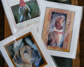 Dog Photo Birthday Card Collection