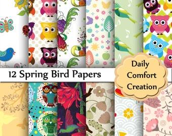 Spring Birds Digital Paper, Birds Digital Paper, Owls Scrapbook Paper, Digital Paper, Spring, Paper, Scrapbook, #5433