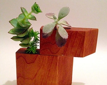 Modern planter, minimalist decor, succulent planter, reclaimed cedar wood - set