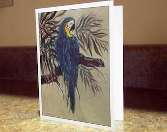 Blank Greeting Card - Blue Macaw