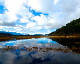 Peaceful Pond Photograph