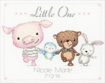 Dimensions Cross Stitch Kit - Little One Baby Birth Record #70-74132