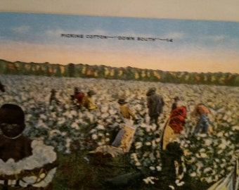 Vintage Black Post Card 1930's Picking Cotton Down South.