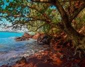 Magical Red sand beach in Maui Hawaii Fine Art Landscape Photo Print, Inspiring Nature