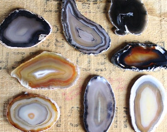 Natural Brazilian Agate Slice 2-3"