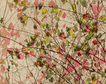 Greeting card, nature, pink, green, leaves, love