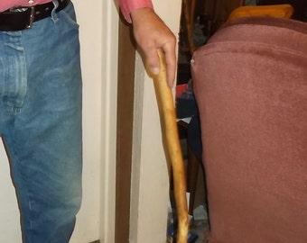 Fruitless mulberry walking stick/cane