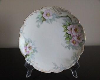 Beautiful Bavarian Painted Plate