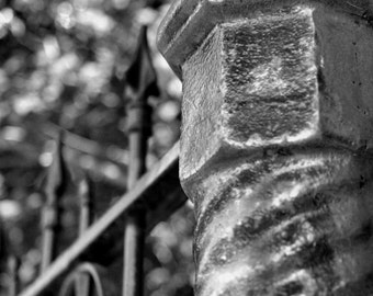 Black and white iron fence