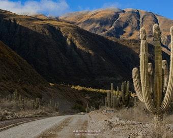 On the Road - Salta, Argentina