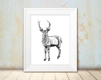 Deer printable, Black and white rain deer poster, Printable wall art, Wall decor, Art print, Art & collectibles