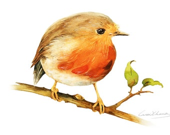 Robin Bird Painting - Watercolor Robin Bird - 5 by 7 print - Watercolor Painting, Archival Print, Minimalist, Home Decor, Nature Art