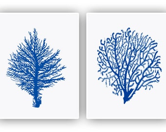 Nautical art, 2 Sea fan Prints, seafan coral, sea fan decor, navy blue fan sea, beach cottage decor, nature inspired, coastal decor, 11x14