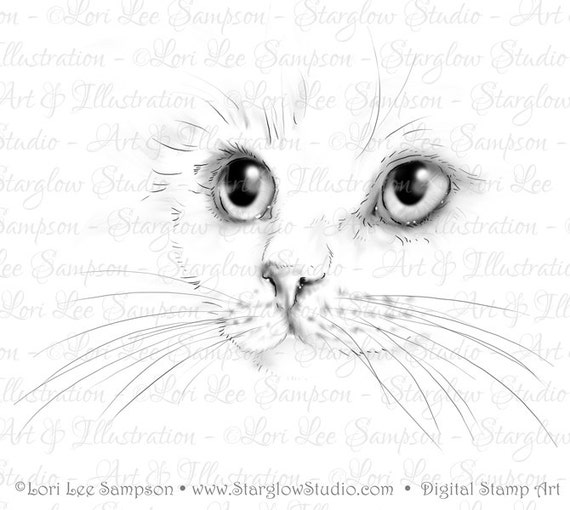 Line Drawing Of A Cat Face : Cat digital stamp kitten face drawing download