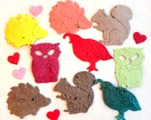 50 Woodland Wedding Favors - Plantable Seed Paper Hedgehogs Owls Quails Squirrels Woodland Animals - Flower Seed Paper - Baby Shower Favor