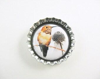 Hummingbird Bottle Cap Fridge Magnet Home & Living, Kitchen, Storage
