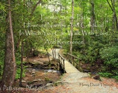 Landscape Typography photo, Spiritual Typographic photo Print Inspirational Art, Forest Path Green Brown Decor Earthy Rustic Home Decor 8x12