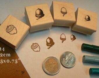 4 miniature acorns rubber stamps