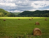 Farm Photography, Nature Print, Country Art, Rural, Hay Bales, Hay Harvest, Mountains, Pastures,  8x10 - 20x24  - Harvest
