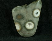 Ocean Jasper with Drusy Quartz Freeform cabochon from Madagascar 23x28x7mm