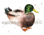 Watercolor DUCK PRINT, duck painting, watercolor birds, 8x10 print, ready to frame, bird lover gift