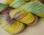 Hand Dyed Sock Yarn - Merino & Silk - Fingering Weight - Gleam - May Flowers