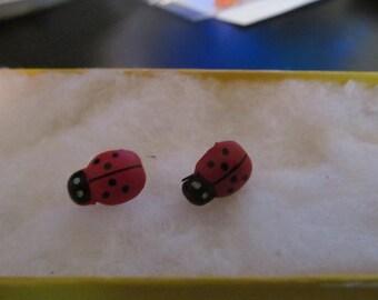 lady bug earrings stud