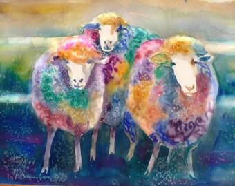 3 Sheep Watercolor 8 X 10 Giclee Print