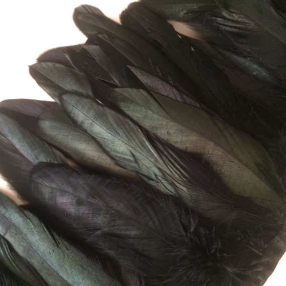 ROOSTER / COQUE FEATHERS Exclusive  Quality  /  Iridescent Black  /  680