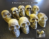 9 Hollow Plastic Skulls - Halloween Crafts - Day of the dead Crafts - decorat