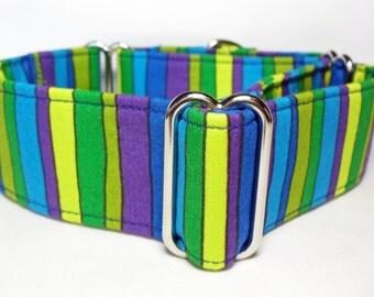 Bright Stripes Greyhound, Whippet, Galgo, Saluki, Dog, Pit Bull  Martingale Collar