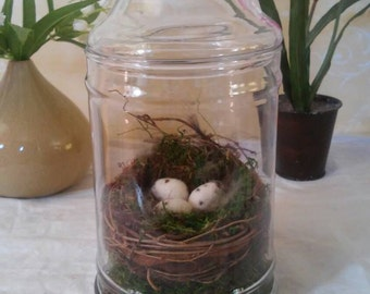 Spring nesting jar needle felted