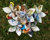 Hop on Pop Dr. Seuss Recycled Book Paper Flowers {5 Large Size}