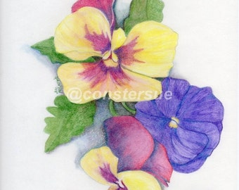 original artwork pansies yellow and purple colored pencil drawing 9x12 acid free paper unframed