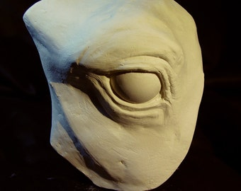 Horse Eye Reference Cast in Plaster or Resin