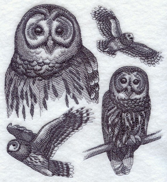 BARRED OWL SKETCH - Machine Embroidered Quilt Block (AzEB)