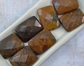 Autumn Jasper Stone 30mm Faceted Rectangle Beads 60% off, qty 7