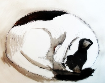 Black and White cat relaxing  by Ros Webb