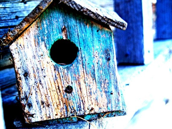 lonely blue bird house, homemade greeting card, nature photo card, birdhouse photo, bright blue, gray, blank photo notecard