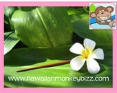 LARGE Foam PLUMERIA Hair CHOPSTICK - For 1 . . .