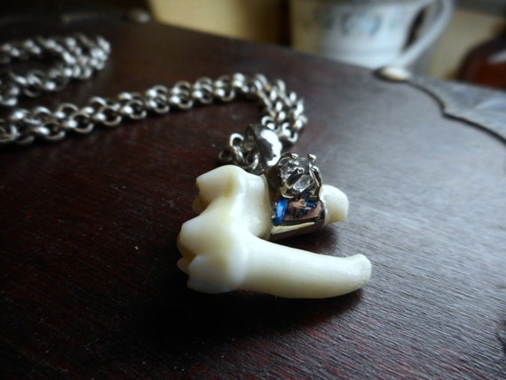 OF WoLf aNd MaN. Solid 10K White gold Cast capped tooth Herkimer Diamond, real coyote tooth molar, Sterling chain. Guardian of Mount Lykaion