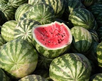 Organic Crimson Sweet Watermelon Seeds