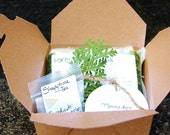 Spa Gift Set - Holiday - Natural Bath and Body by SoulSisterSoaps