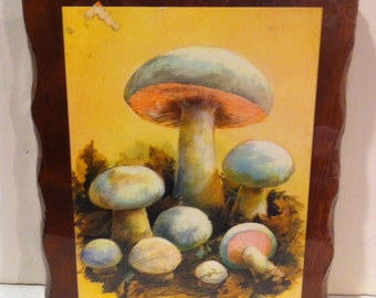 Wooden Mushroom Picture