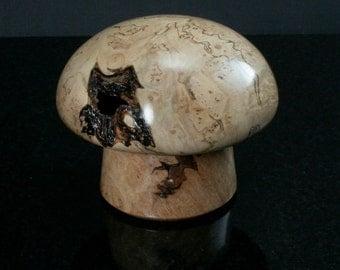 Maple burl mushroom box MB-104