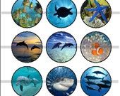 "Ocean Life Pins, Ocean Life Magnets, Ocean Life 1"" Flat Backs, Hollow Backs, Ocean Life Cabochons 12 ct"