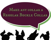 Switch to a Regular Buckle Collar!